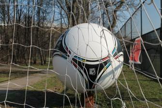 Футбольная лихорадка