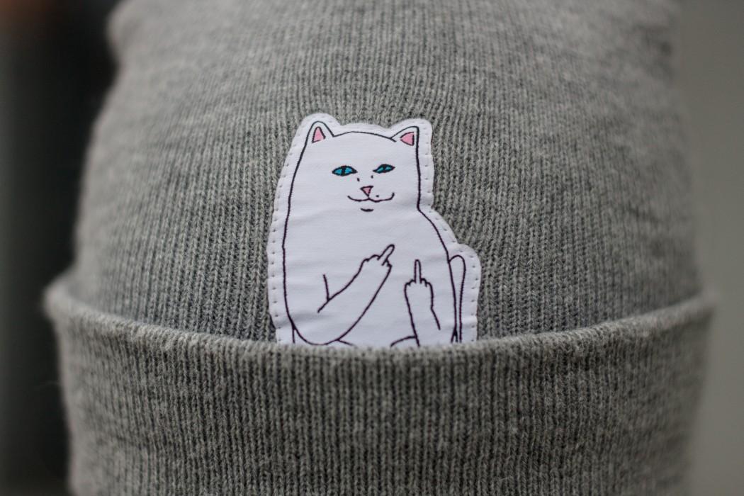 Кот вышкаlook