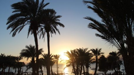 По стопам: путеводитель по Иордании